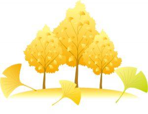 秋の家族信託相談会のイメージ